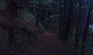 Get off the road! Mount Victoria, Wellington